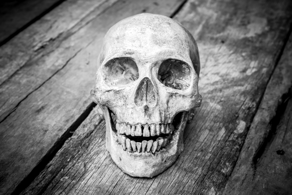 I thought skeletons were hiding with my father's whiskey bottle